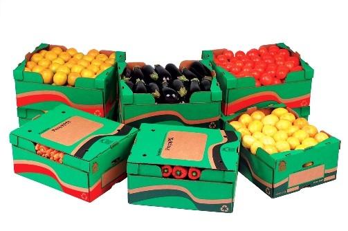 Embalagens de papelão ondulado para transporte de tomate