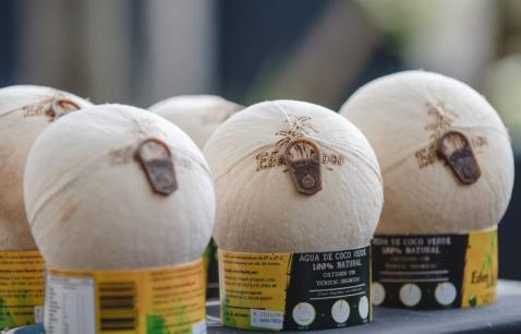 Empresa aposta em coco in Natura que abre como latinha de alumínio