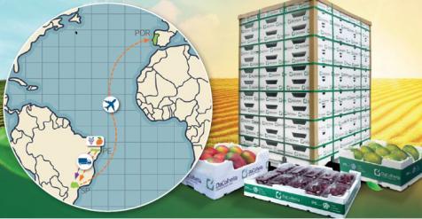 Embalagens DaColheita contribuem para a redução da pegada ambiental